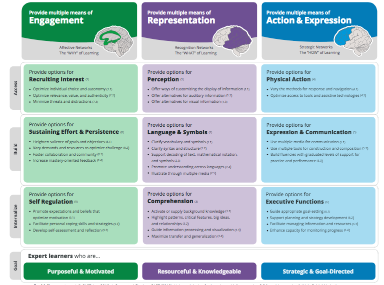 Chart linked to CAST framework showing how educators can provide different options for the principles of UDL