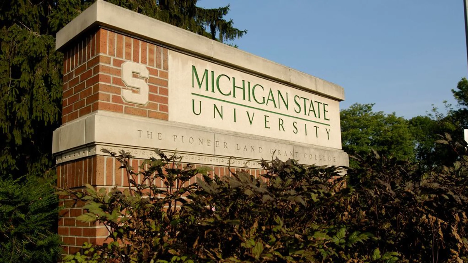 Image of MSU sign