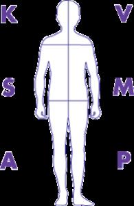 graphic of a man with KSA VMP around him
