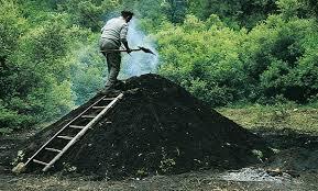 Resultado de imagen de carbonero oficio españa