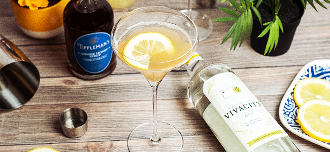 Vivacity Fine Spirits' Cocktail Served in a Martini Glass