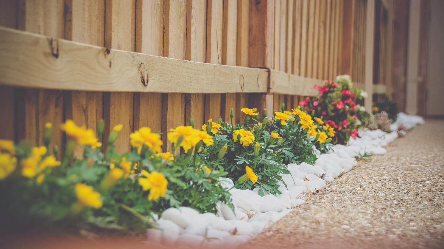 gardening service in Balmoral