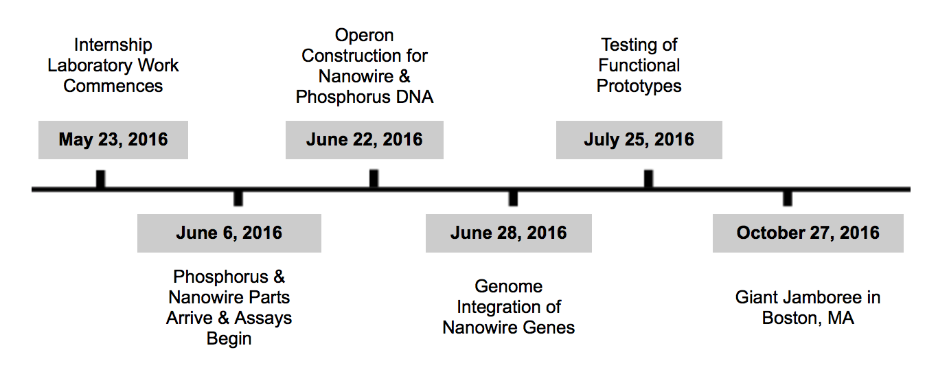 Proposed 2016 Project Timeline