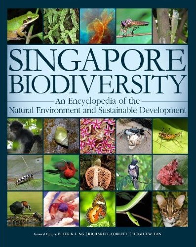 Image result for biodiversity in singapore