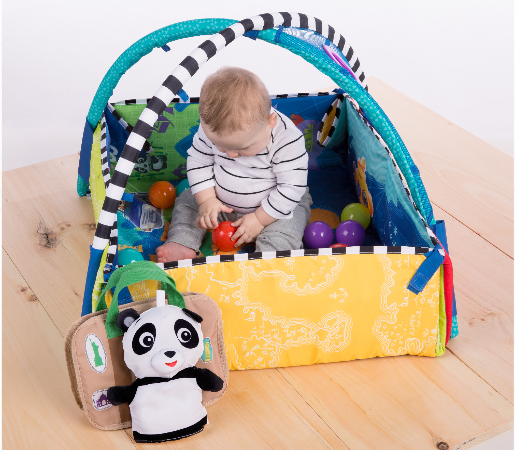 Baby Einstein 5-in-1 Journey of Discovery Activity Gym and Play Mat