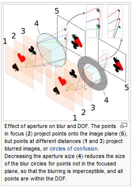 มิติของรูป