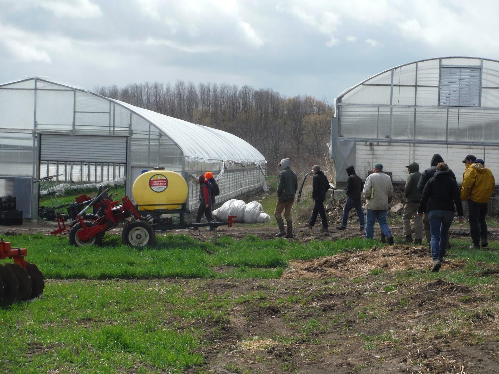 group, greenhouses.JPG