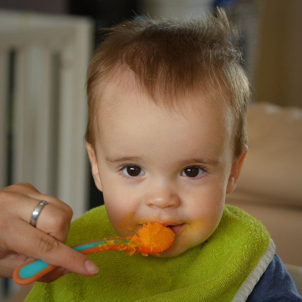 Guest Post:  Safe Food for Infants and Children: Safe Heating of Solid Food