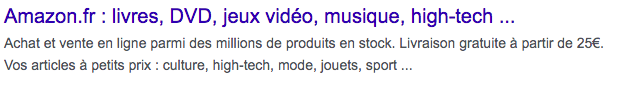 Amazon France - A Google snippet example