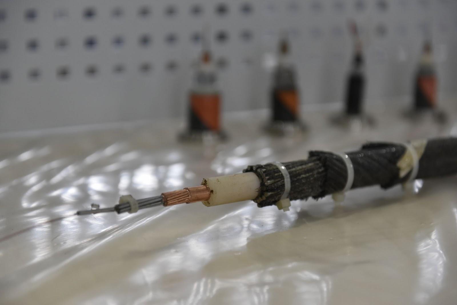 В Мурманске запустили завод по производству кабеля для подводной линии связи