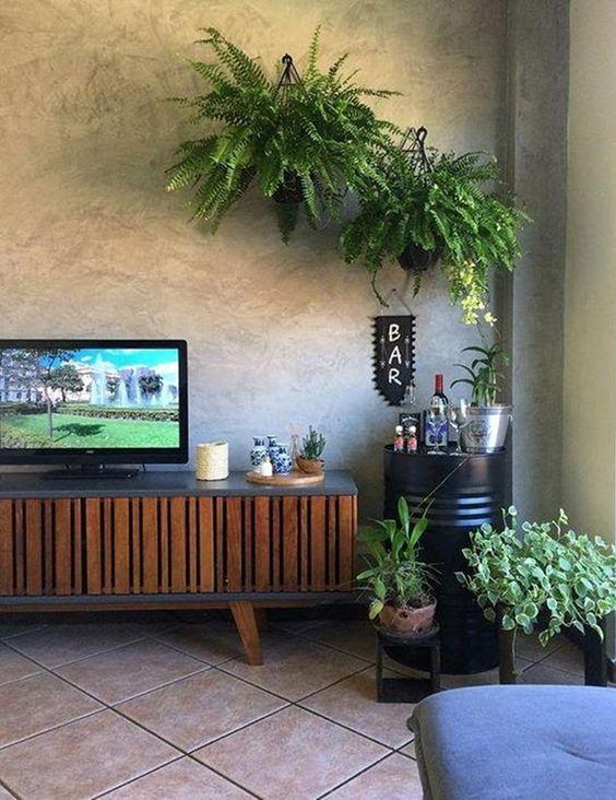 Sala com estilo rústico, hack de madeira e plantas e cantinho para mini bar.