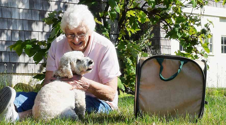 which pets are good for seniors