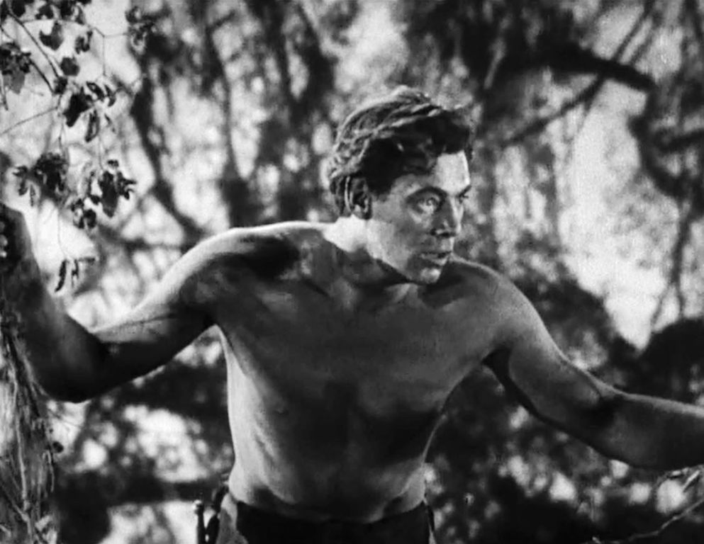 Image result for public domain Tarzan