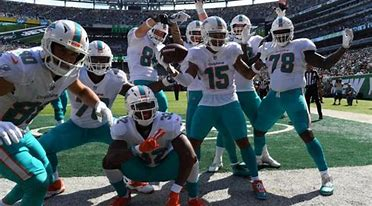 Image result for miami dolphins 2019 season