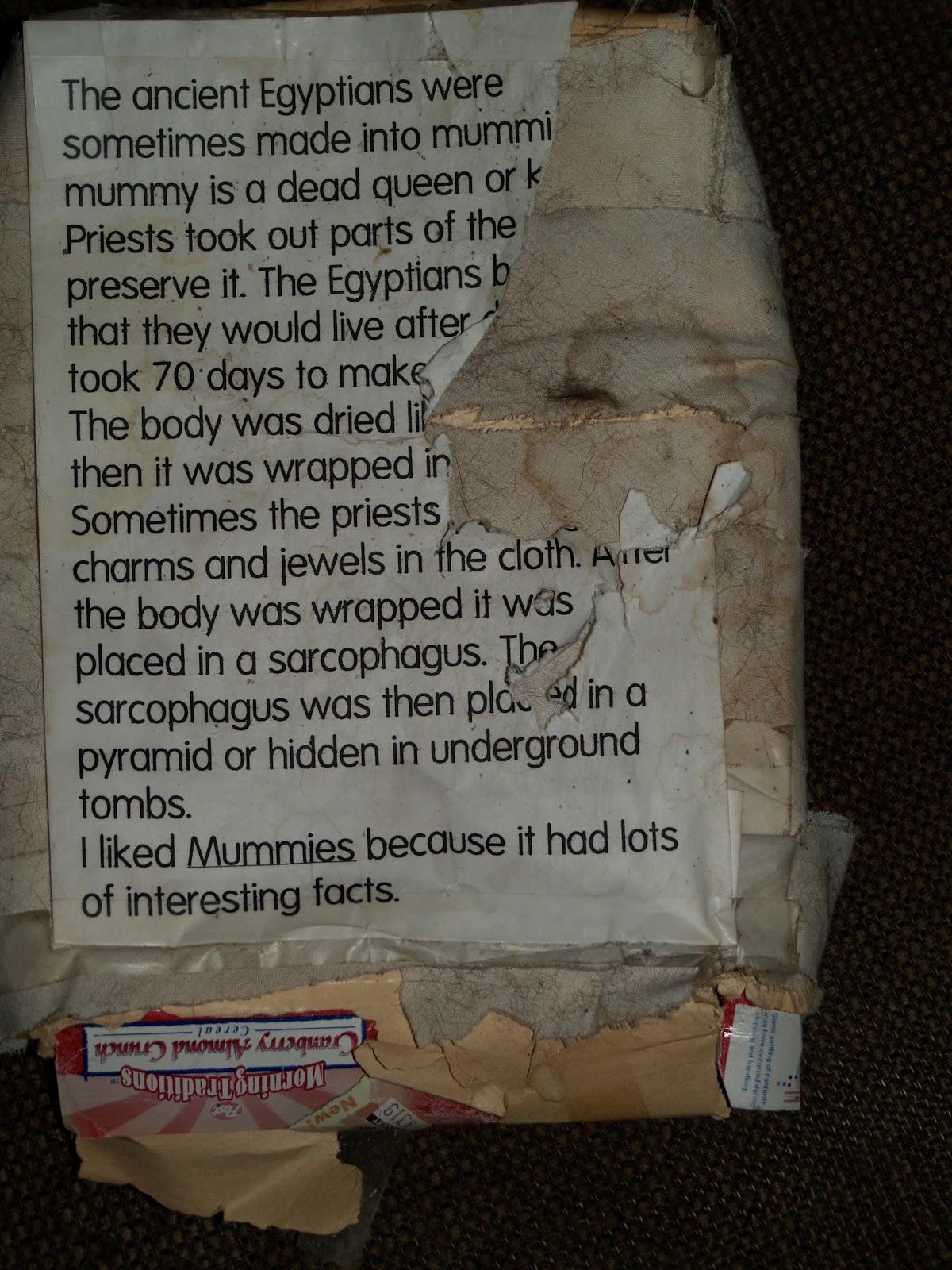 """Alexandra's """"Mummies"""" report. Image via Alexandra Morris"""