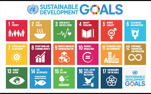 Find out more about the SDGs here: https://sustainabledevelopment.un.org/sdgs