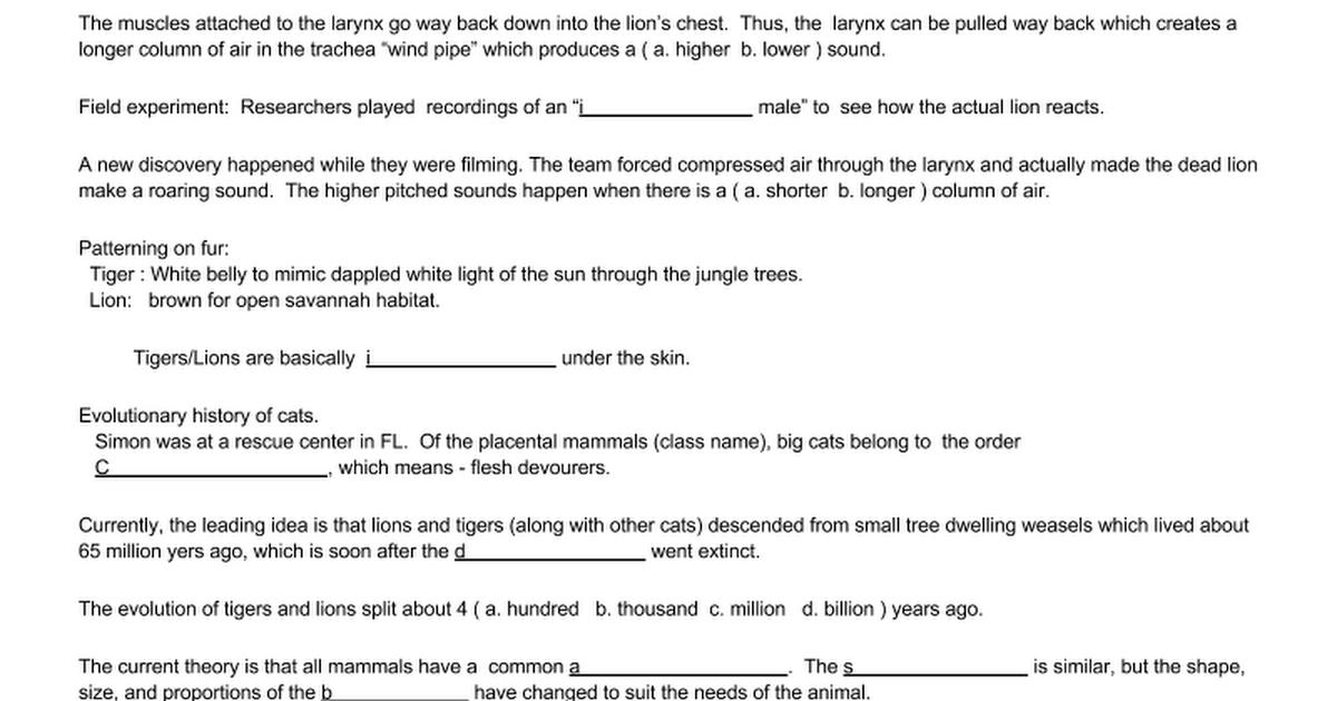 Big Cats Dissection Worksheet Google Docs – Cat Dissection Worksheet