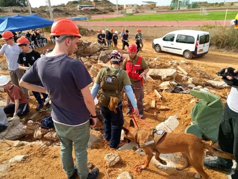 Training at the ruins site of the dog unit (Photo: Dovrat Yachal)