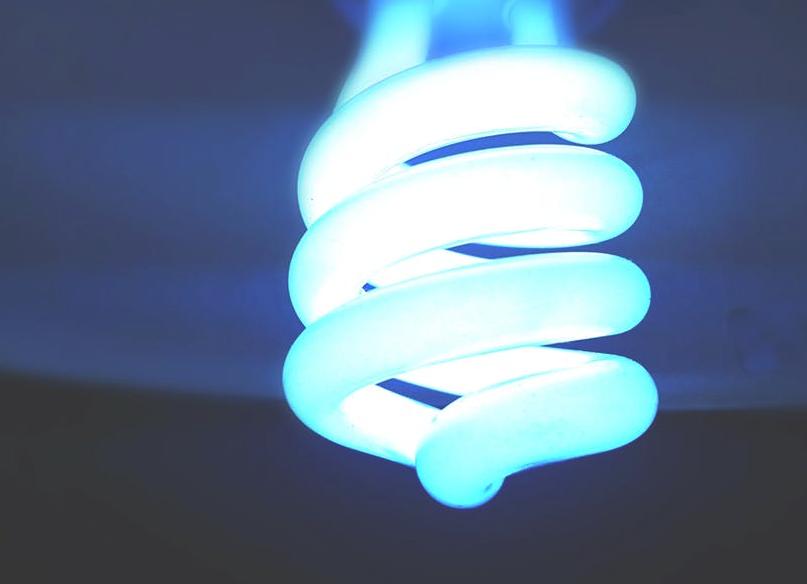 Blue light bulb- Cocoweb