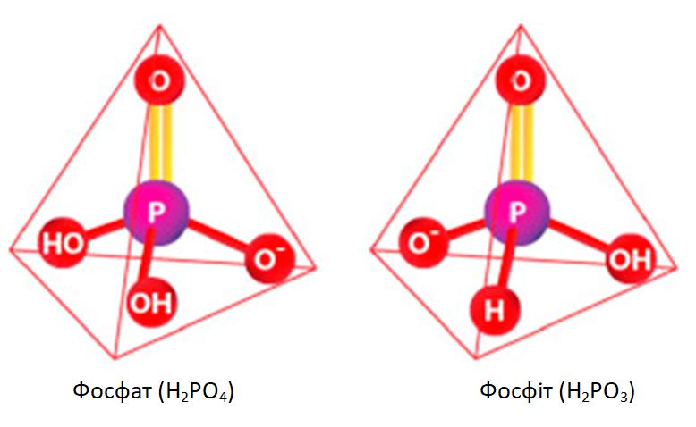 Fosfat(h2po4)