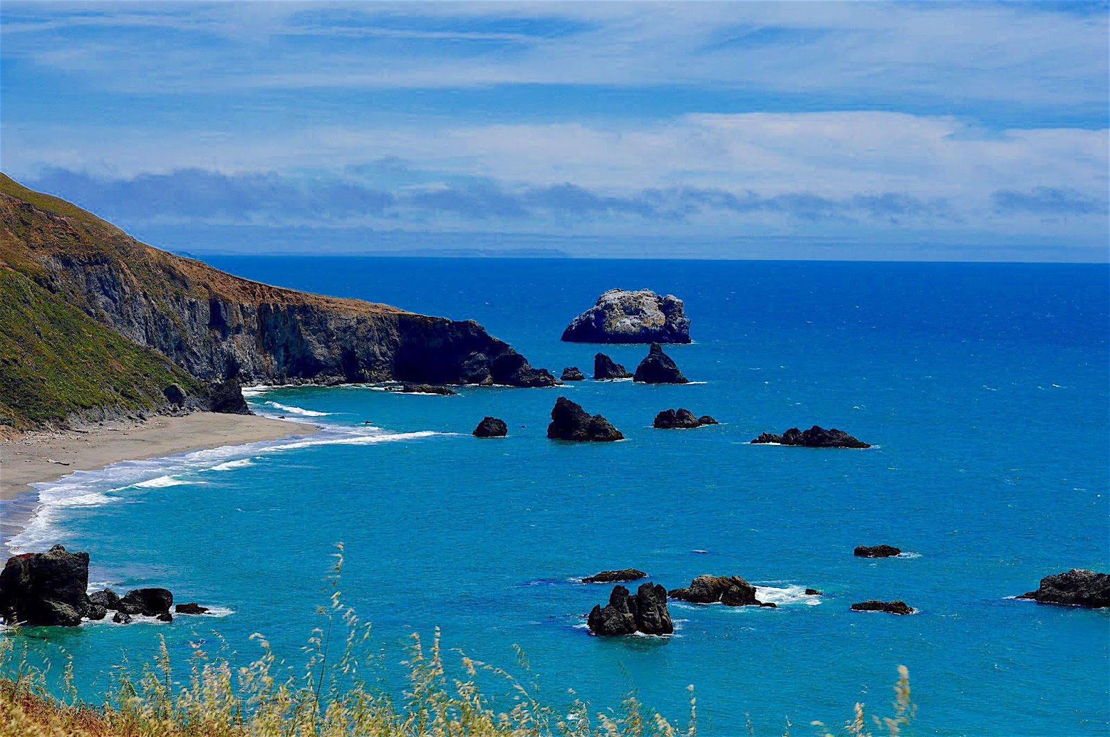 The Official Bodega Bay Area Website |