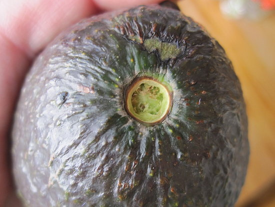 ripe avocado nub