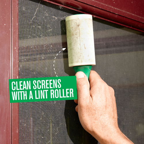 clean retractable fly screens with a lint roller