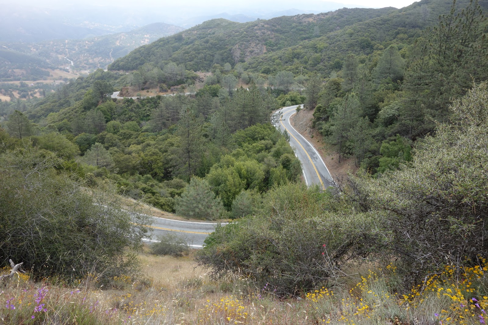Curvy roadway on climb up Mt. Hamilton east to Lick Observatory Silicon Valley