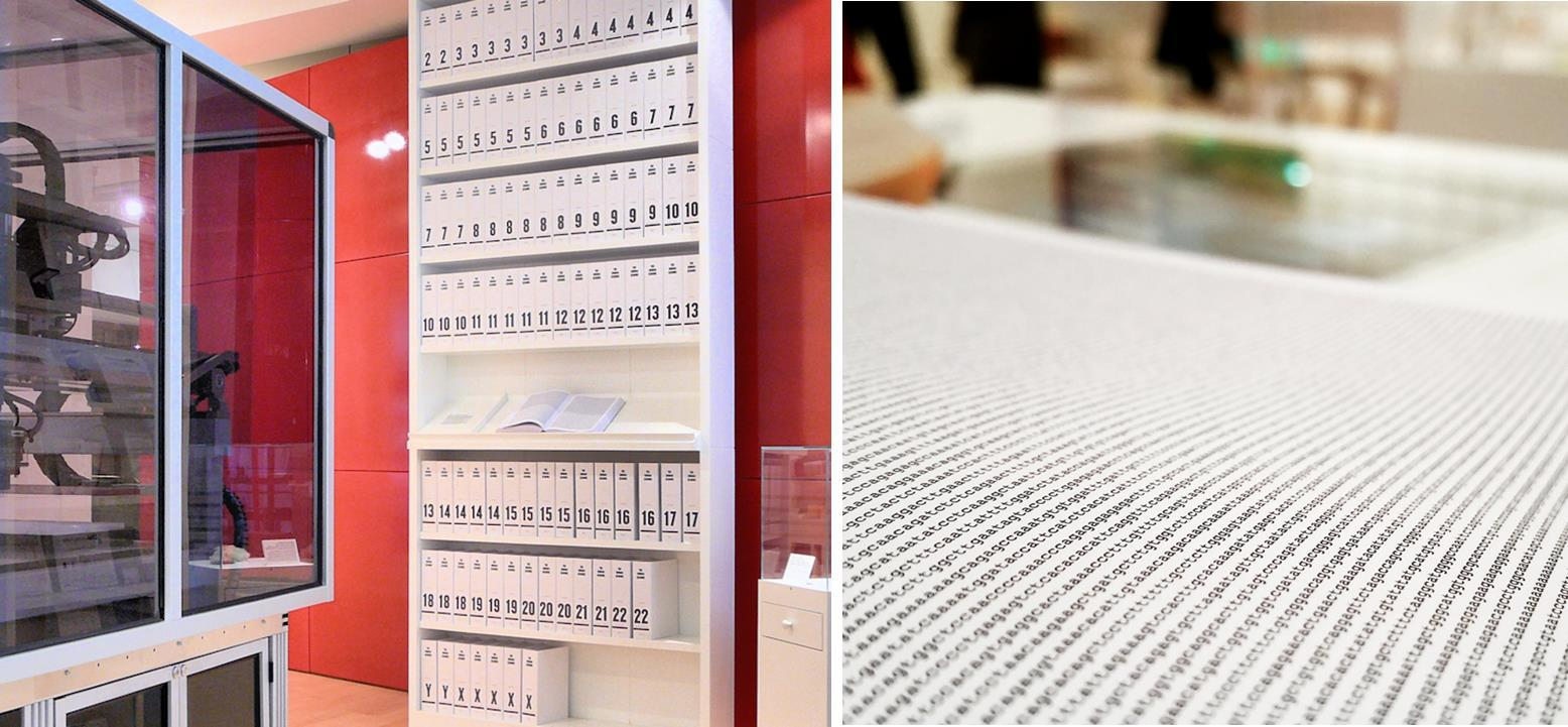Wellcome Human Genome Library in London