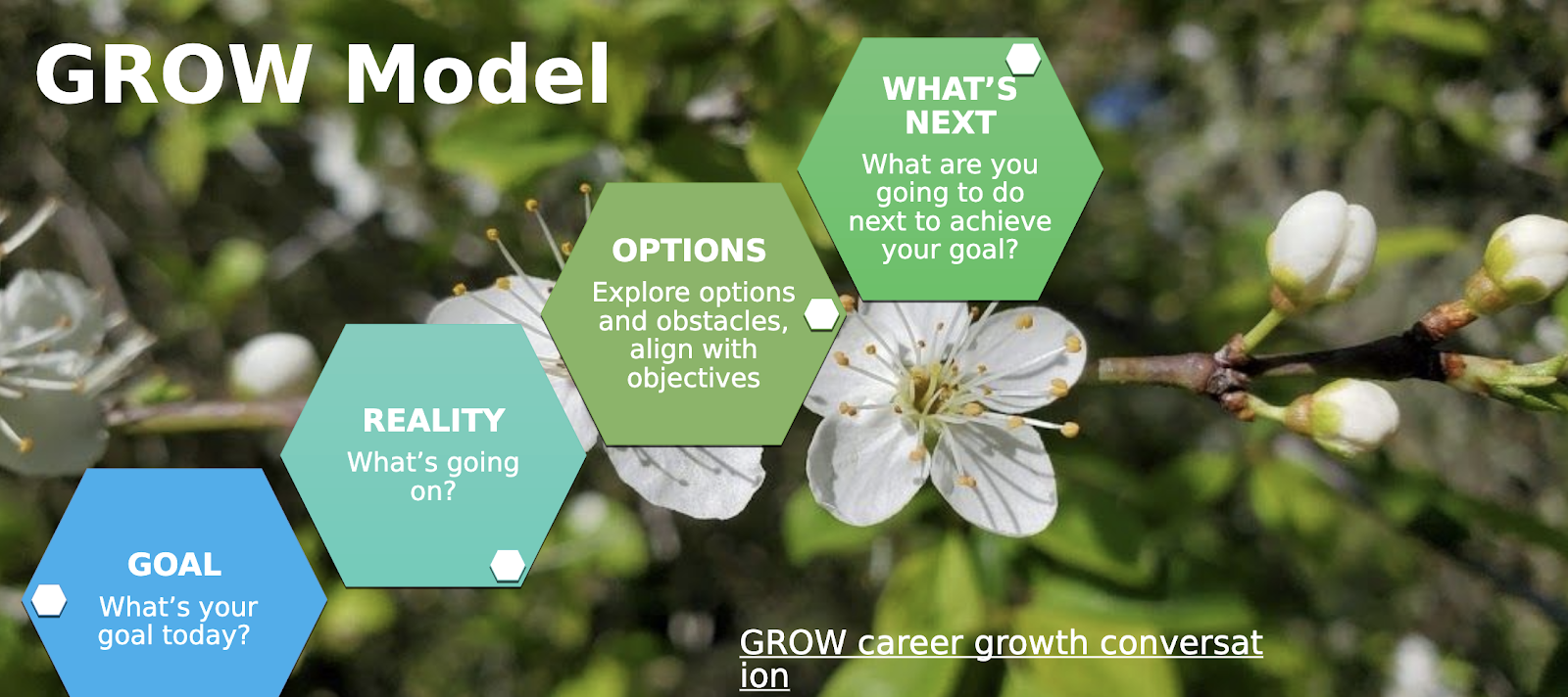 The growth model for a product marketer.