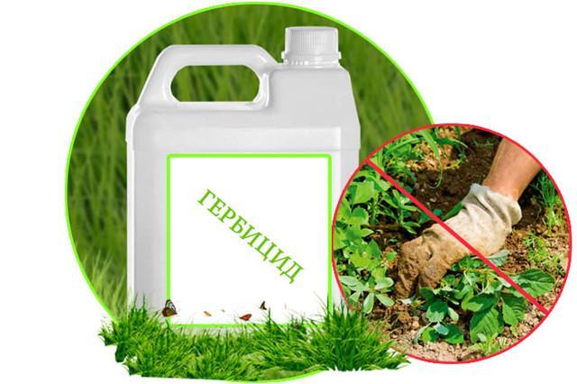 купить гербициды в Одессе недорого