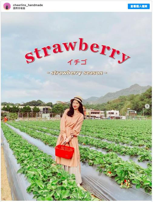 2021新春假期 到苗栗草莓園採草莓