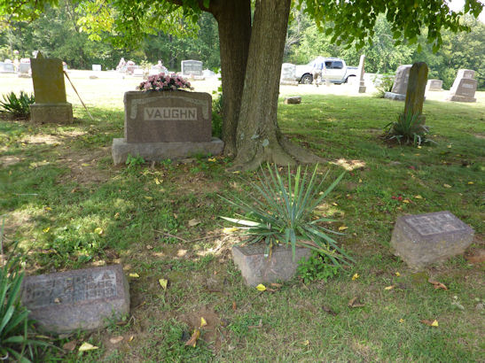 Front of Lemuel Lafayette Vaughn plot under tree_sml.jpg