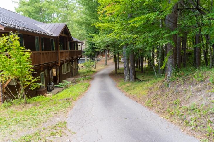 森の中の道を歩いている家  自動的に生成された説明