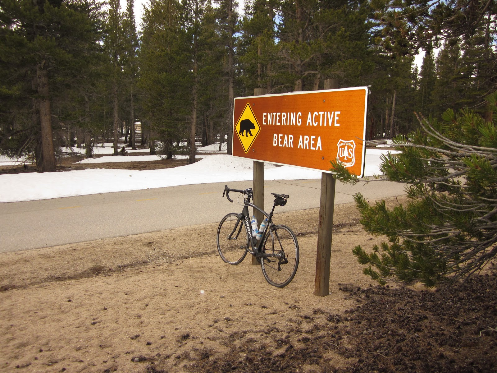 Bear sign with bike on Horseshoe Meadows Road.