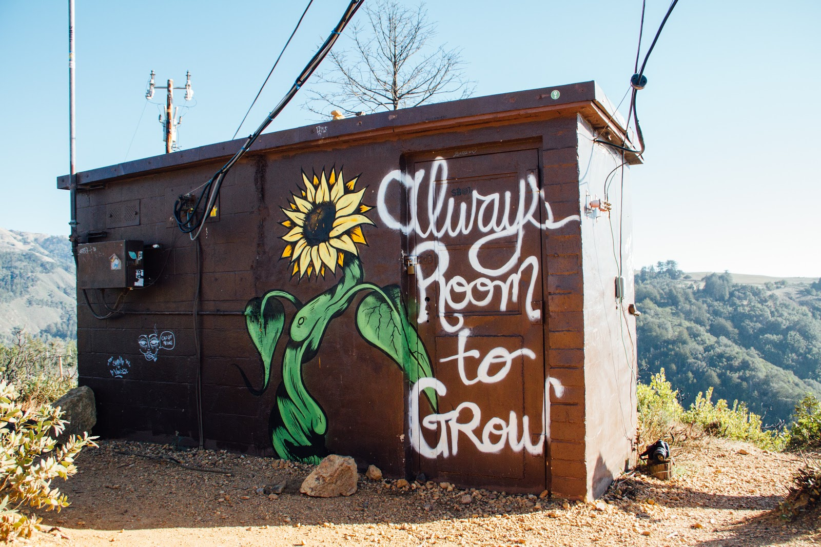 there's always room to grow sign