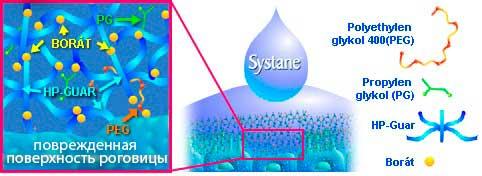 Капли Systane GEL Drops имеют особую увлажняющую систему, которая адаптируется к индивидуальной слезной пленке каждого человека. Они образуют гелеобразный покровный слой, который обеспечивает достаточную защиту и позволяет обновлять клетки глазной поверхности. При смешивании компонентов капель с природными слезами образуется мягкий гель, который образует стойкий защитный слой на поверхности глаза.