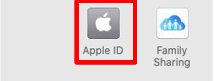 Click on your Apple ID