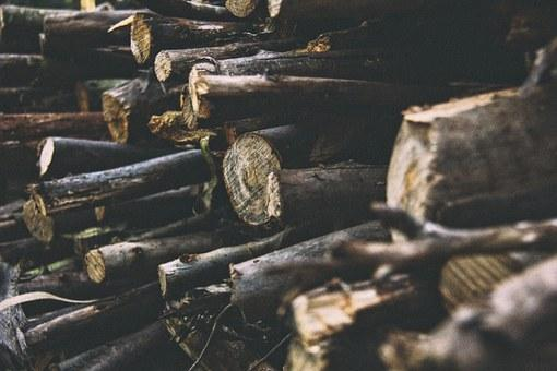 Logs, Logging, Timber, Lumber, Pile