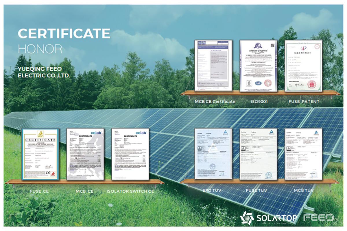 FEEO đơn vị uy tín ngành điện mặt trời