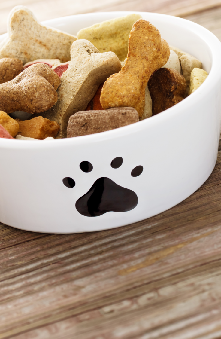 Trying to keep your pet stuff organized? You can keep treats, chewies, and toys in a basket for one-stop convenience. Here are 10 ridiculously easy DIY pet food bowl stand projects that your pets will love.