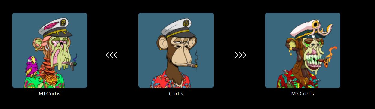 Bored Ape to Mutant Ape Transformation
