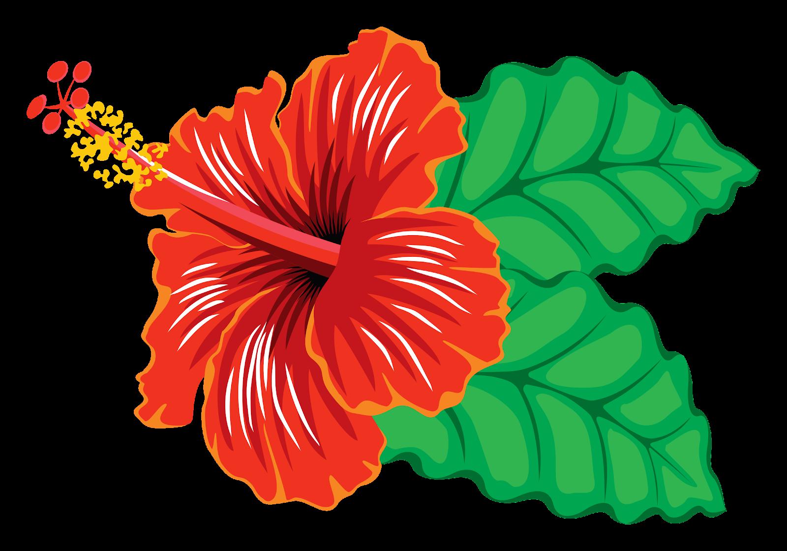 hibiscus[1]