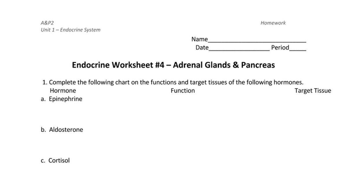 Endocrine System Worksheet 4 Adrenal Gland Pancreas Google Docs – Endocrine System Worksheets
