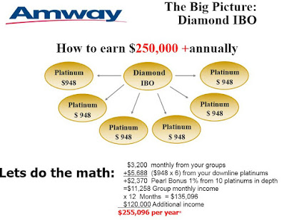 business plan of amway