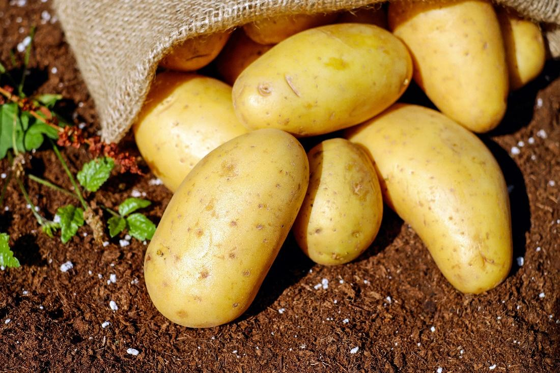 Pickled Potatoes- How Do You Make Them