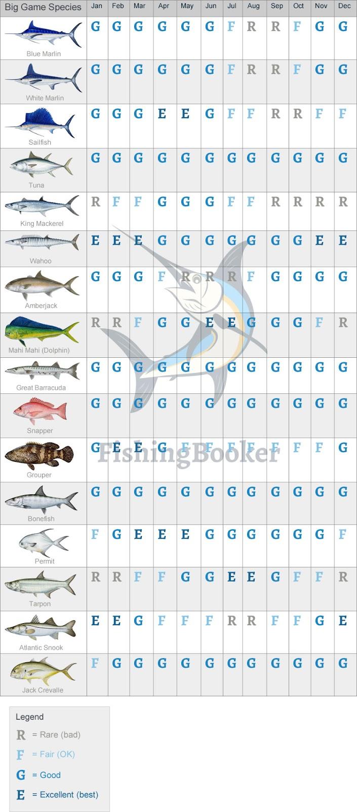 fishing calendar belize
