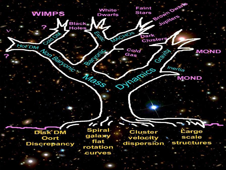 http://astroweb.case.edu/ssm/mond/DMtreePTcover.jpg