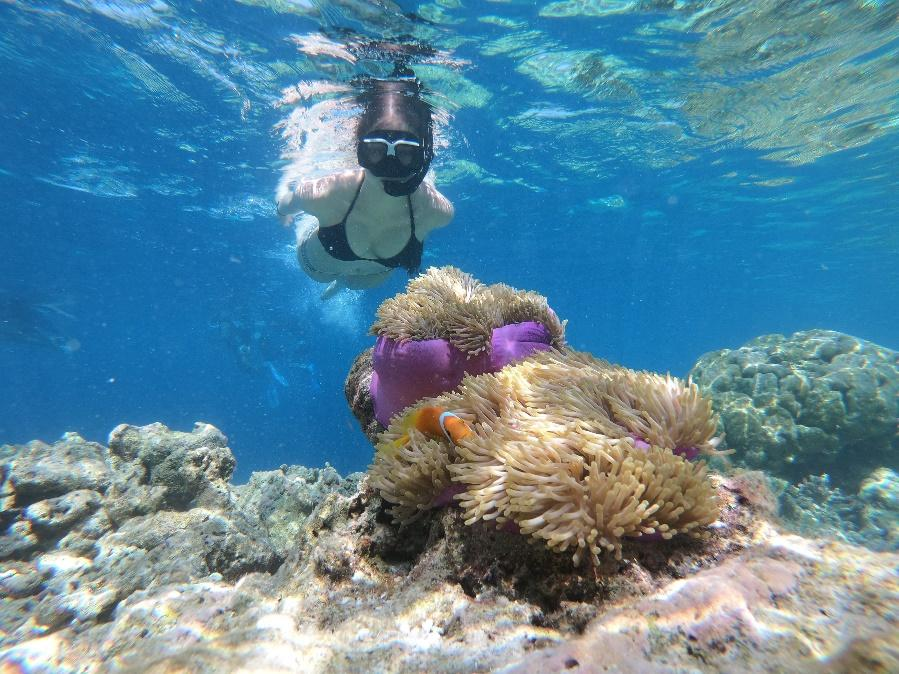 Snorkeling and Diving at Tanjung Lesung