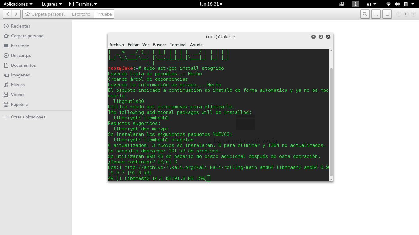 C:\Users\Jake\Desktop\Backtrackacademy\Estenografia\Captura de pantalla de 2016-05-30 18-31-57.png
